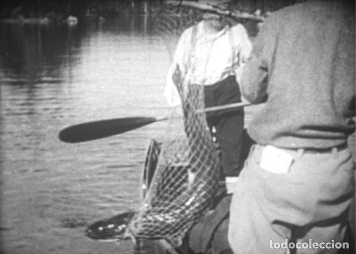 Cine: FISHING TRILLS (complete edition)- Película de cine de 16 mm. - Foto 6 - 203765946