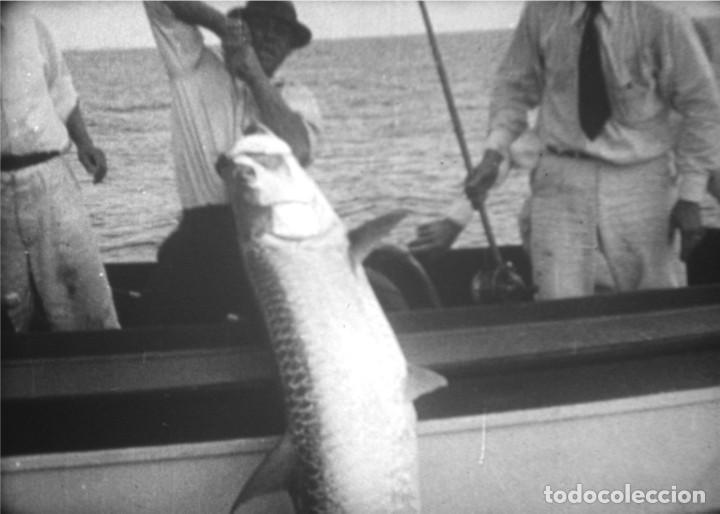 Cine: FISHING TRILLS (complete edition)- Película de cine de 16 mm. - Foto 11 - 203765946