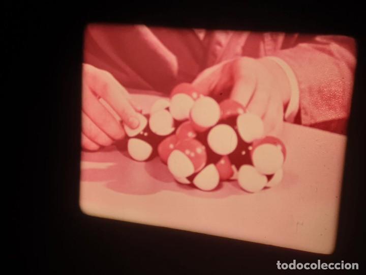 Cine: LA MATERIA,LA POLINIZACIÓN DE LAS FLORES (DOCUMENTALES)16 MM- 1 x 300 MTS. RETRO-VINTAGE FILM - Foto 8 - 207295568
