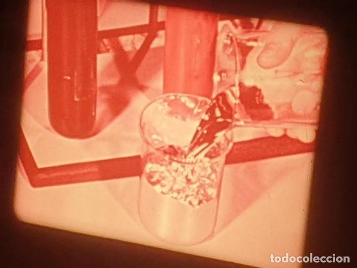 Cine: LA MATERIA,LA POLINIZACIÓN DE LAS FLORES (DOCUMENTALES)16 MM- 1 x 300 MTS. RETRO-VINTAGE FILM - Foto 12 - 207295568