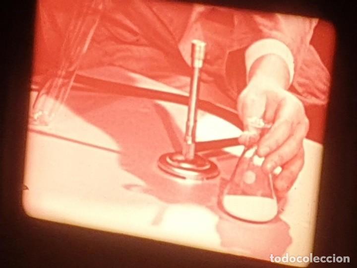 Cine: LA MATERIA,LA POLINIZACIÓN DE LAS FLORES (DOCUMENTALES)16 MM- 1 x 300 MTS. RETRO-VINTAGE FILM - Foto 15 - 207295568