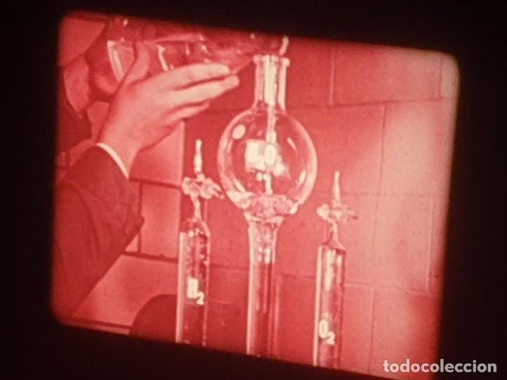 Cine: LA MATERIA,LA POLINIZACIÓN DE LAS FLORES (DOCUMENTALES)16 MM- 1 x 300 MTS. RETRO-VINTAGE FILM - Foto 18 - 207295568