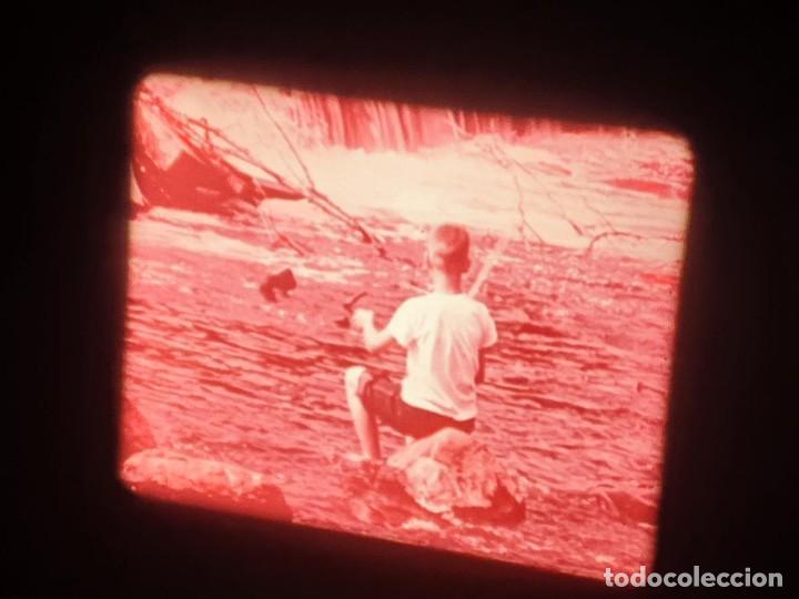 Cine: LA MATERIA,LA POLINIZACIÓN DE LAS FLORES (DOCUMENTALES)16 MM- 1 x 300 MTS. RETRO-VINTAGE FILM - Foto 22 - 207295568