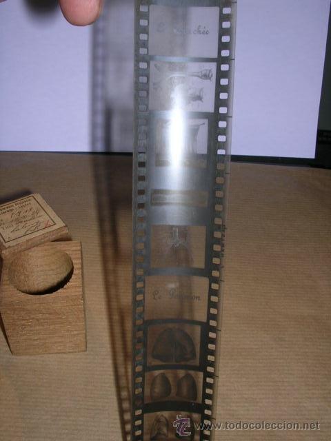 Cine: PELICULA 1641 FILM MICROPHOTE Ste.Ame.LA PHOTOSCOPIE BRUXELLES -LA RESPIRATION - LE PARYNX - LA TRAC - Foto 4 - 32337031