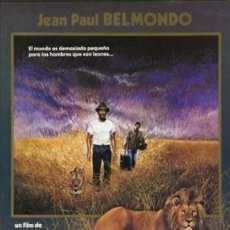 Cine: PELÍCULA LARGOMETRAJE DE CINE EN 35MM EL IMPERIO DEL LEÓN (1988). Lote 237831445