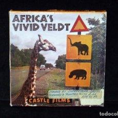 Cine: AFRICA'S VIVID VELDT. CASTLE FILMS 8 MM., BLANCO Y NEGRO. MUDA. Lote 71750231