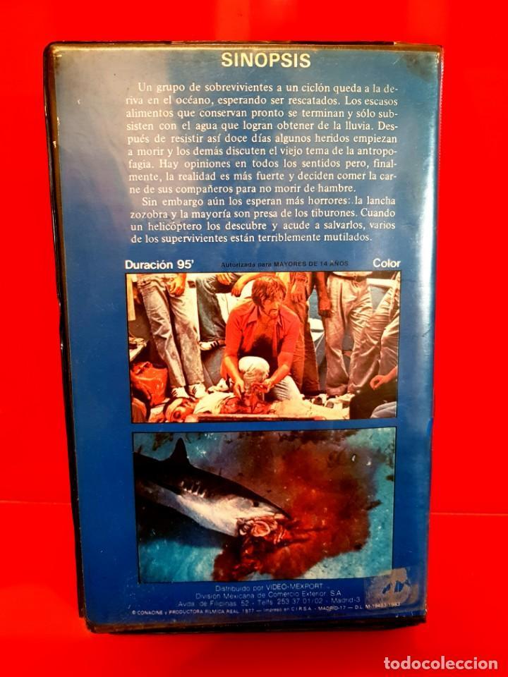 Cine: CICLÓN - Cyclone (1978) Tiburones asesinos. Dir. RENE CARDONA. OJO Beta - Foto 2 - 149405914