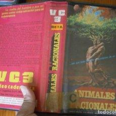 Cinema: PELICULA BETA, ANIMALES RACIONALES. Lote 252126855