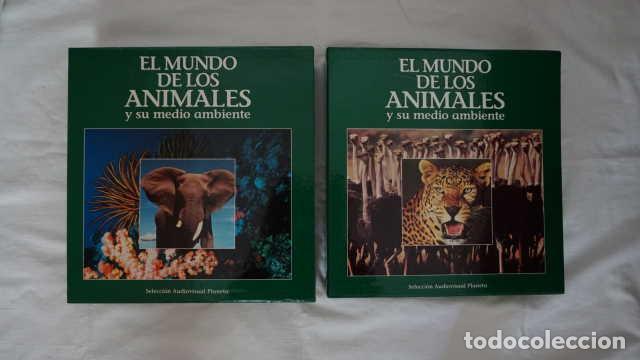 EL MUNDO DE LOS ANIMALES Y SU MEDIO AMBIENTE SELECCION AUDIOVISUAL PLANETA LASER DISC (Cine - Películas - Blu-Ray Disc)