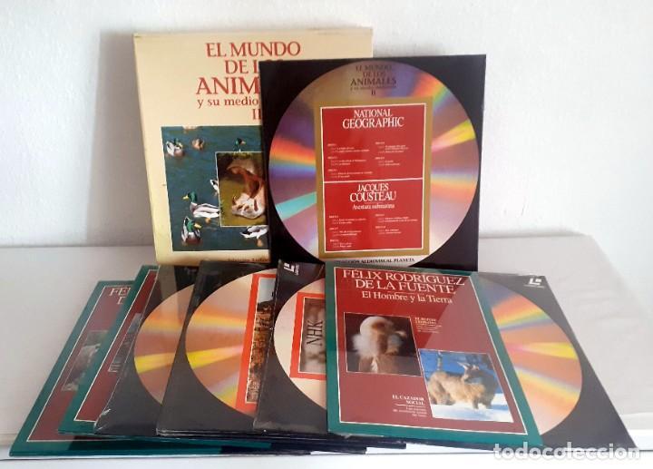 LASER DISC EL MUNDO DE LOS ANIMALES Y SU MEDIO AMBIENTE II. 9 DISCOS PLANETA FELIZ RODRIGUEZ FUENTE (Cine - Películas - Blu-Ray Disc)