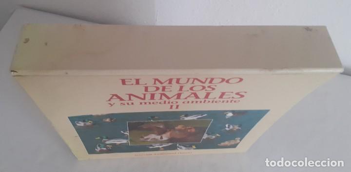 Cine: LASER DISC EL MUNDO DE LOS ANIMALES Y SU MEDIO AMBIENTE II. 9 DISCOS PLANETA FELIZ RODRIGUEZ FUENTE - Foto 5 - 217525465