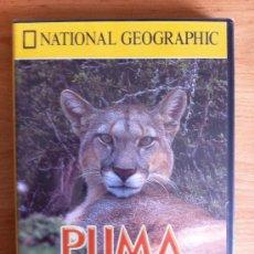 Cine: PUMA, EL LEÓN DE LOS ANDES - NATIONAL GEOGRAPHIC - DVD. Lote 32270108
