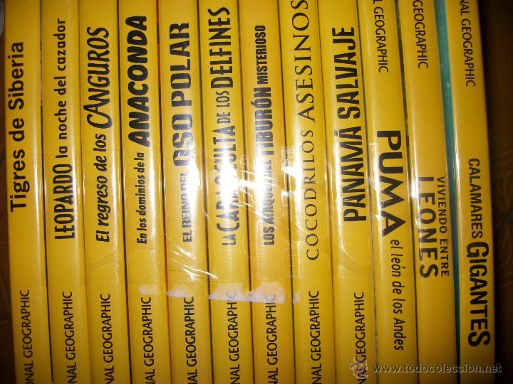 LOTE 12 DVDS NATIONAL GEOGRAPHIC - PRECINTADOS - NATURALEZA - SE VENDEN SUELTOS (Cine - Películas - DVD)