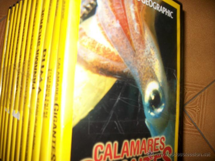 Cine: LOTE 12 DVDS NATIONAL GEOGRAPHIC - PRECINTADOS - NATURALEZA - SE VENDEN SUELTOS - Foto 2 - 117780840