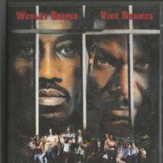 Cine: DVD - INVICTO - DIR. WALTER HILL. Lote 49264659