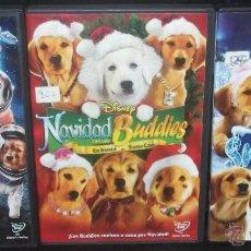 Cine: PACK LOS BUDDIES 3 DVDS - COLECCION DISNEY SOBRE INTELIGENTES CACHORROS ¡¡UNICA EN TODOCOLECCION!!. Lote 53453026