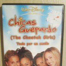 Cine: DVD CHICAS GUEPARDO. Lote 148520413