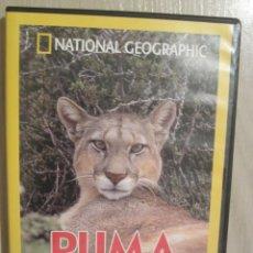 Cine: DVD NATIONAL GEOGRAPHIC PUMA EL LEON DE LOS ANDES. Lote 51576726