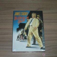 Cine: UN LEON EN LAS CALLES DVD DE RAOUL WALSH JAMES CAGNEY NUEVA PRECINTADA. Lote 288579838