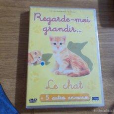 Cine: REGARDE-MOI GRANDIR. LE CHAT. Lote 55104015
