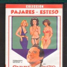 Cine: CINE GOYO - DVD - CARAY CON EL DIVORCIO - FERNANDO ESTESO - MARIA SALERNO - AGUSTIN GONZALEZ - *CC99. Lote 56395395