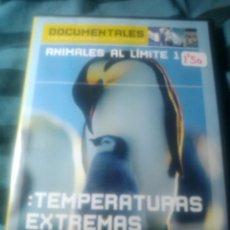 Cine - TEMPERATURAS EXTREMAS: ANIMALES AL LIMITE 1 - 56611217