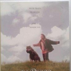 Cine: EL PERRO DE FLANDES (1999) - KEVIN BRODIE - DESCATALOGADO - DVD. Lote 62599668