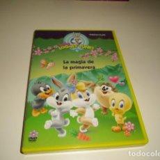 Cine: DVD BABY LOONEY TUNES LA MAGIA DE LA PRIMAVERA . Lote 80306697