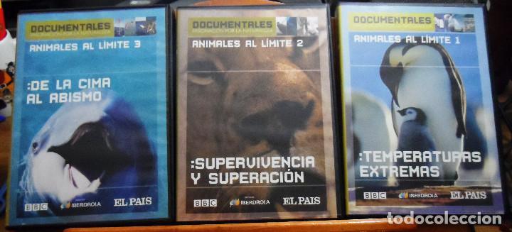 ANIMALES AL LÍMITE. DVDS 1, 2 Y 3. TEMPERATURAS EXTREMAS. SUPERVIVIENCIA Y SUPERACIÓN. DE LA CIMA AL (Cine - Películas - DVD)