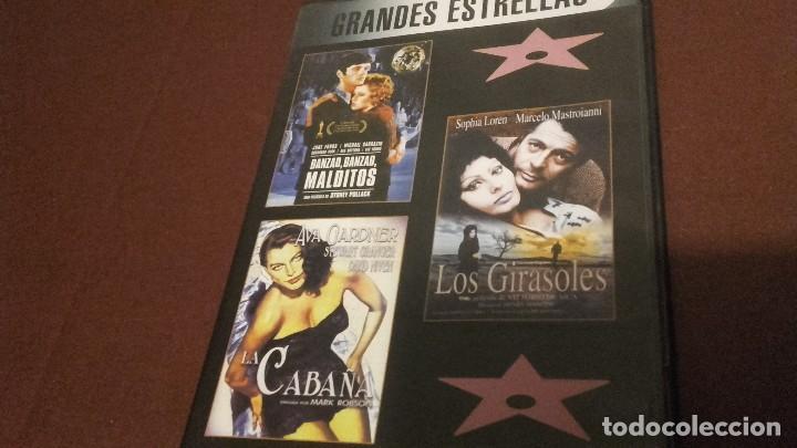 AVA GADNER SOFIA LOREN MASTROIANNI LOS GIRASOLES (Cine - Películas - DVD)