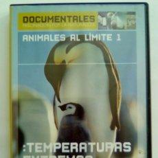 Cine - ANIMALES AL LIMITE 1. TEMPERATURAS EXTREMAS - 102812947