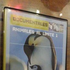 Cine - animales al limite 1, temperaturas extremas - 105978367