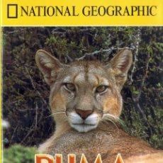 Cine: PUMA. EL LEÓN DE LOS ANDES. NATIONAL GEOGRAPHIC. DVD. Lote 109545759