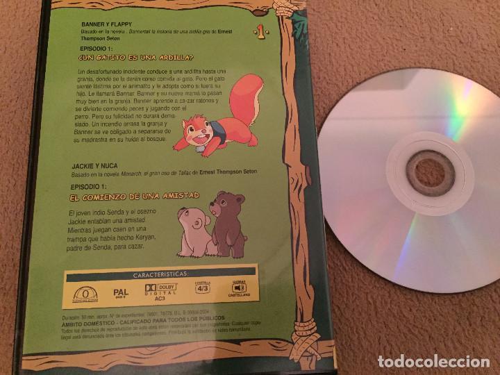 Cine: BANNER Y FALLY JACKIE & NUCA dvd video kreaten planeta junior - Foto 2 - 110588587