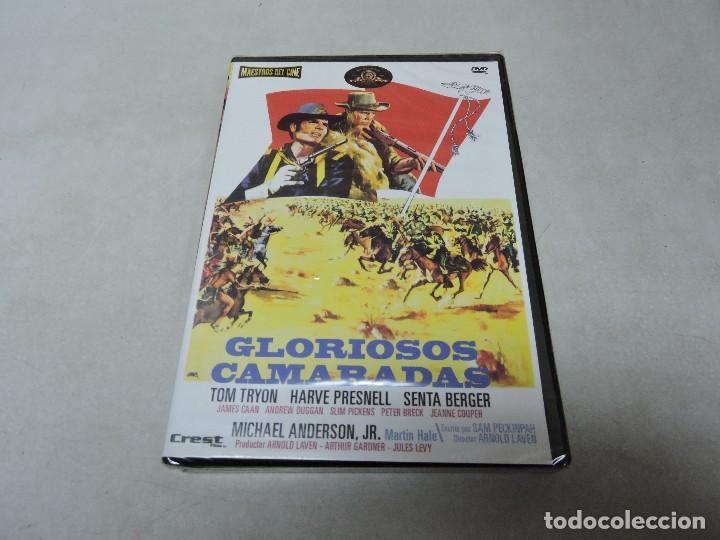 GLORIOSOS CAMARADAS DVD (Cine - Películas - DVD)