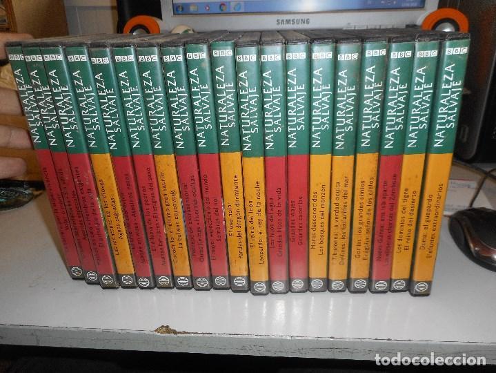 NATURALEZA SALVAJE BBC 19 DVD (Cine - Películas - DVD)