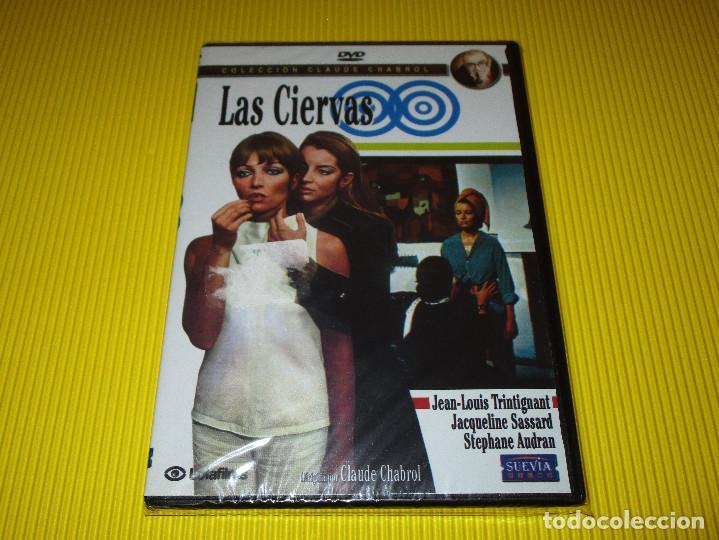 LAS CIERVAS - DVD - EDICION 1669 - SUEVIA FILMS - PRECINTADA - JEAN-LOUIS TRINTIGNANT ... (Cine - Películas - DVD)