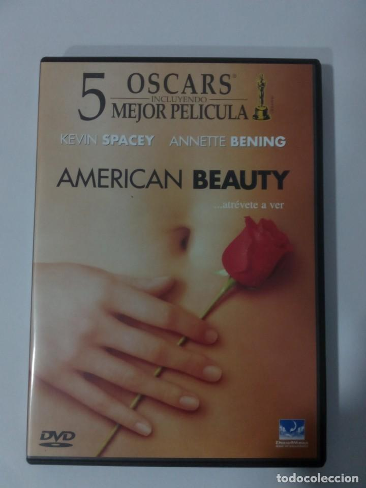 Cine: AMERICAN BEAUTY -DVD- - Foto 1 - 132258814