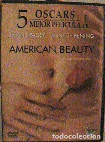 DVD AMERICAN BEAUTY. (Cine - Películas - DVD)