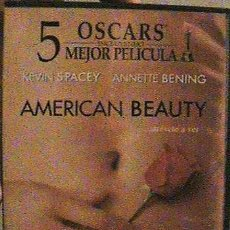 Cine: DVD AMERICAN BEAUTY.. Lote 132490774