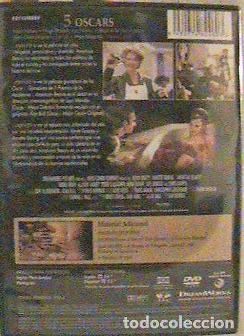 Cine: DVD AMERICAN BEAUTY. - Foto 2 - 132490774