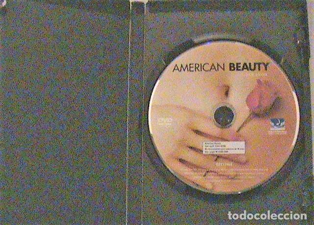 Cine: DVD AMERICAN BEAUTY. - Foto 3 - 132490774