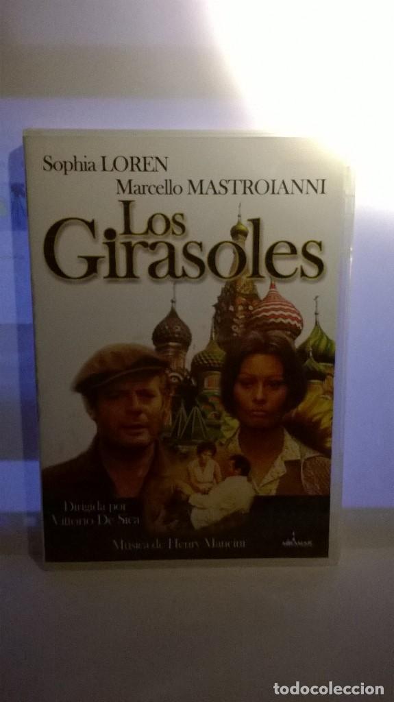 LOS GIRASOLES DE VITTORIO DE SICA CON MARCELLO MASTROIANNI SOFIA LOREN (Cine - Películas - DVD)