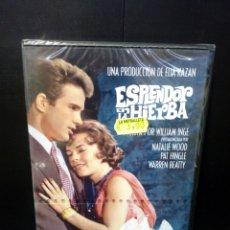 Cine: ESPLENDOR EN LA HIERBA DVD. Lote 142759461