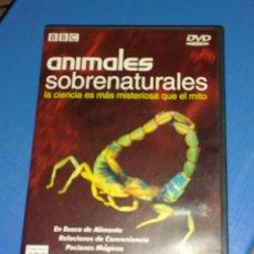 Kino - Animales sobrenaturales. BBC - 142983265