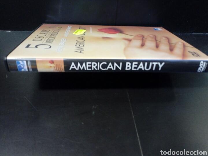 Cine: American beauty dvd - Foto 2 - 171346293