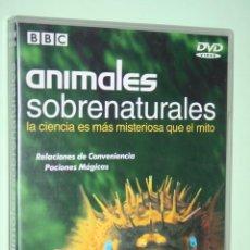 Kino - ANIMALES SOBRENATURALES *** DVD CINE DOCUMENTAL ANIMALES *** PRODUCCIONES JRB - 156466470