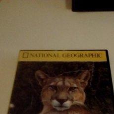 Cine: G-BETELL9 DVD CINE NATIONAL GEOGRAPHIC PUMA EL LEON DE LOS ANDES . Lote 159695006