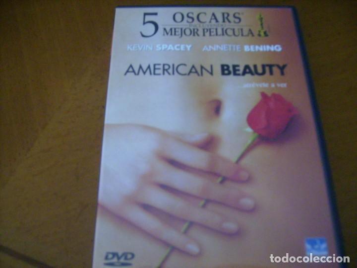 Cine: AMERICAN BEAUTY / DVD - Foto 1 - 164634722