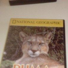 Cine: G-JCA52C DVD DOCUMENTALES NATIONAL GEOGRAPHIC PUMA EL LEON DE LOS ANDES . Lote 165534882
